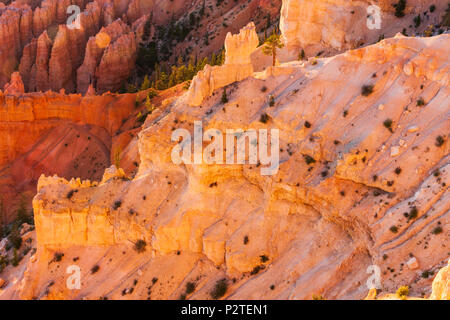 Sonnenaufgang am Bryce Point, Bryce Canyon National Park in Utah. - Stockfoto