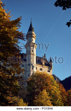 Schloss Neuschwanstein auf der Bergseite, Bayern, Deutschland, Europa, 2017 - Stockfoto