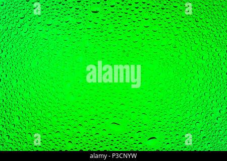 Nahaufnahme eines Wassertropfen auf grünem Hintergrund Farbverlauf, mit Tropfen Wasser - Kondensation abgedeckt. - Stockfoto