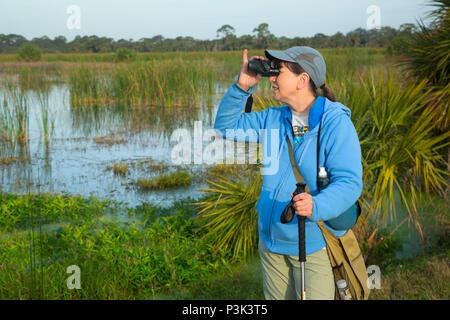 Birding, Indian River County Feuchtgebiete, Vero Beach, Florida - Stockfoto