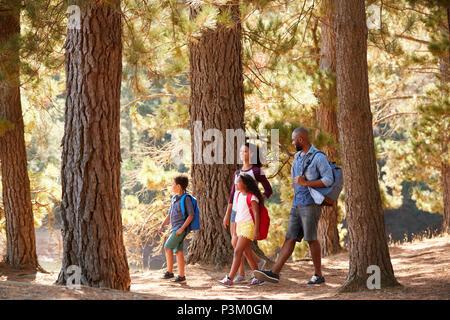 Familie auf Wandern Abenteuer durch den Wald am See - Stockfoto