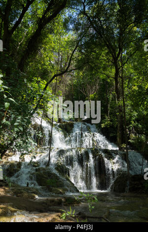 Ein Blick auf eine der vielen Wasserfälle im Nationalpark Krka, Kroatien - Stockfoto
