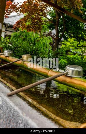 Stille am Wasserbecken am Eingang von einem Schrein in Japan für die riual Temizuya Reinigung - 13. - Stockfoto