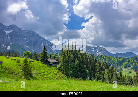 Berglandschaft in den Schweizer Alpen in der Nähe von Urnäsch und Schwägalp, Kanton Appenzell Ausserrhoden, Schweiz. - Stockfoto