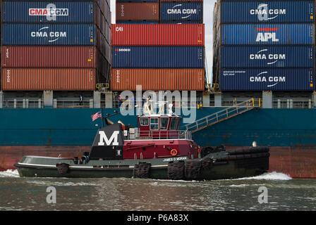 Moran Abschleppen des Traktors tug James D. Moran transfer unterwegs mit einem Container schiff mit Containern gestapelt - Stockfoto