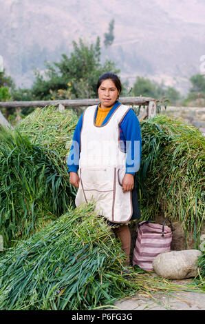 Frau verkaufen frische Gerste - Stockfoto