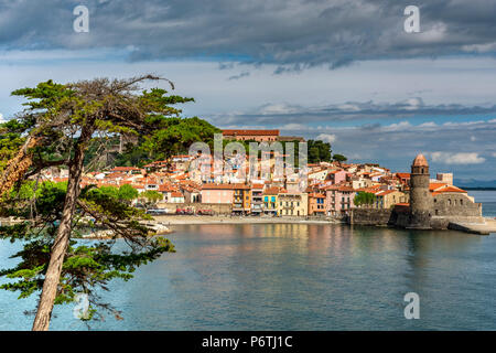Collioure, Pyrénées-orientales, Frankreich - Stockfoto