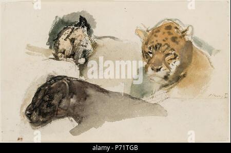 English: Max Slevogt: Raubkatzen. Aquarell auf Papier, 14 x 22,5 cm, rechts signiert und datiert. 1901 164 Max Slevogt - Raubkatzen - Stockfoto