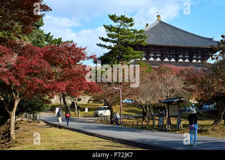 Nara Park im Herbst mit Todaiji Tempel im Hintergrund, Nara, Japan, Asien - Stockfoto