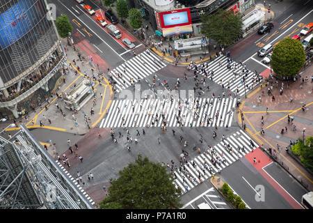 Tokyo, Japan - 26. Juni 2016: Ariel Blick auf die geschäftigen Shibuya Crossing, da kriecht, wo nach oben von 1000 Menschen die Straße jeden ti Kreuz bekannt - Stockfoto