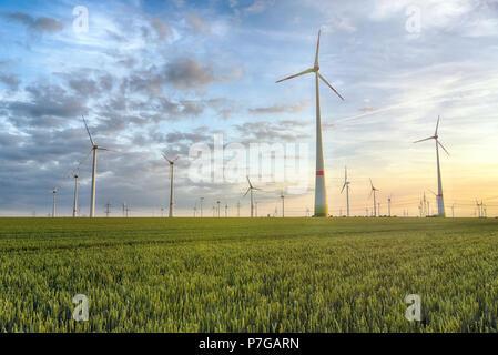 Erneuerbare Energien - Stromerzeugung mit Windkraftanlagen in einem Windpark - Stockfoto