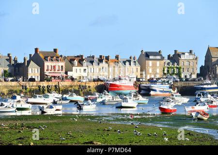 """Frankreich, Manche, Cotentin, Barfleur, """"Les Plus beaux villages de France (Schönste Dörfer Frankreichs), Hafen - Stockfoto"""