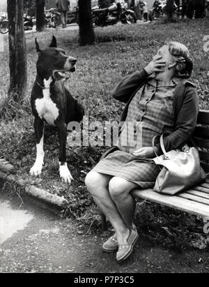 Frau Angst vor Dogge Ca. 1970 s, genaue Ort unbekannt, Tschechische Republik - Stockfoto