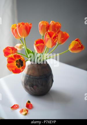 Immer noch sehr schön - Leben mit Tulpen - Stockfoto