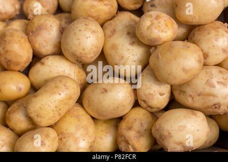 Frische Kartoffel abstrakte Obst bunte Muster Textur Hintergrund - Stockfoto