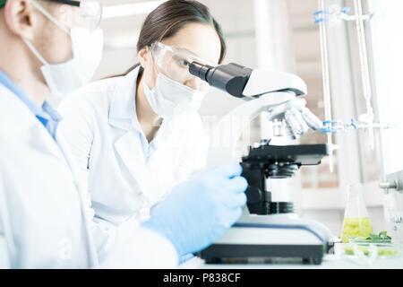 Weibliche Wissenschaftler im Labor Stockfoto