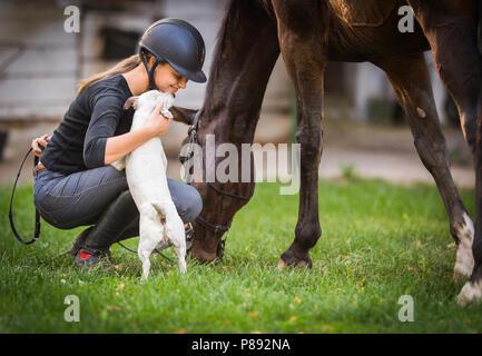 Frau streichelt Jack russel Terrier Welpen Hund auf dem