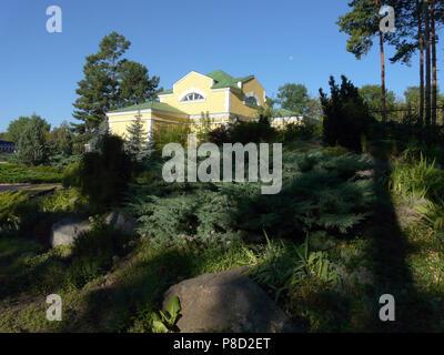 Steine Und Dekorative Straucher In Landscape Design Stockfoto Bild