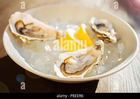 Frische und köstliche Austern stehen und warten für die Bereitstellung - Stockfoto