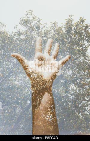 Double Exposure von einer menschlichen Hand und ein Baum - Stockfoto