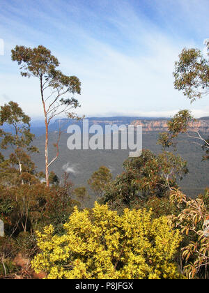 Blick über Jamison Valley, Mount Solitary vom Echo Point Lookout, Katoomba, Blue Mountains, New South Wales, Australien - Stockfoto
