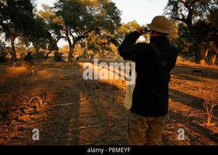 Park Ranger und Touristen auf Safari gehen. Mana Pools Nationalpark. Simbabwe - Stockfoto