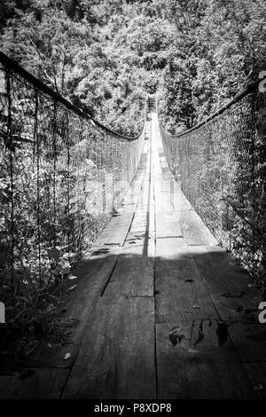Wald Fußgängerbrücke über den Fluss in Guatemala, Mittelamerika in Schwarz und Weiß - Stockfoto