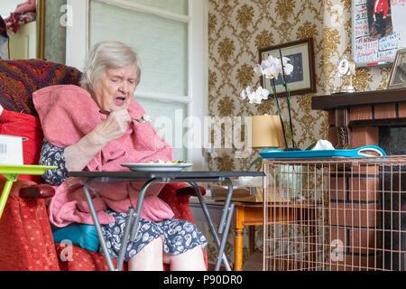 Alte Dame mit Demenz in Ihrem Lehnstuhl sitzend essen Ihr Mittagessen aus einer Tabelle mit einem Handtuch als bib - Stockfoto