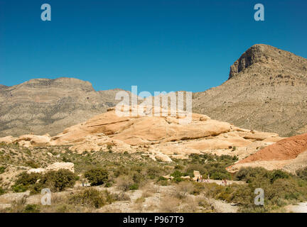 Wiesen und Berge in der Red Rock Canyon National Conservation Area am Rande von Las Vegas, Nevada. - Stockfoto