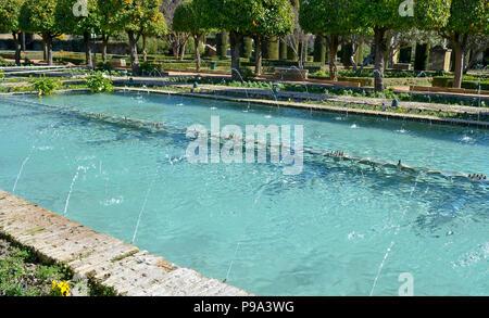 Pool in der Gartenanlage am Alcázar de los Reyes Cristianos in Cordoba, Spanien - Stockfoto