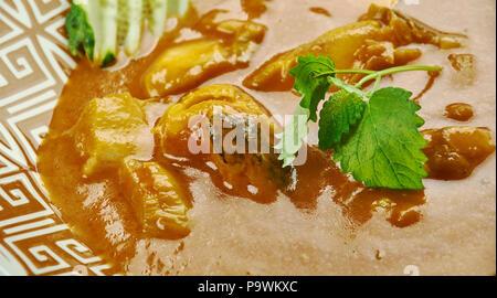 Alleppey Fisch Curry - Kerala Stil würzige Fisch Curry, die leicht durch den Einsatz von Rohstoffen Mangos oder Tamarinde spritzig. - Stockfoto