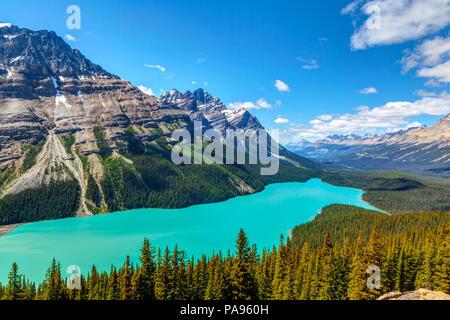 Peyto Lake, von Bow Summit in Banff National Park gesehen auf dem Icefields Parkway. Der Gletscher - FBI-See ist berühmt für seine hell türkis ist farbig - Stockfoto