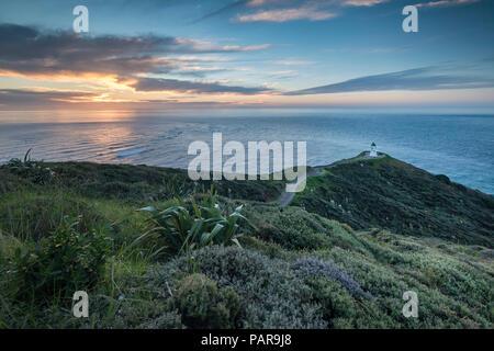 Leuchtturm am Cape Reinga, am Abend Stimmung, Northland, North Island, Neuseeland - Stockfoto