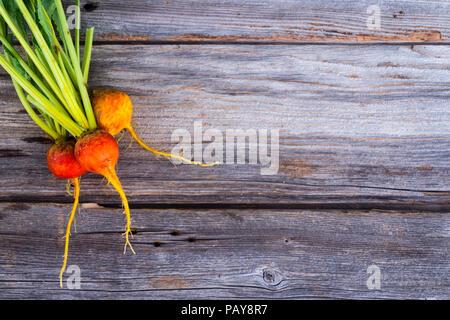 Golden Rüben frisch Raw auf rustikalen Holz Hintergrund geerntet - Stockfoto