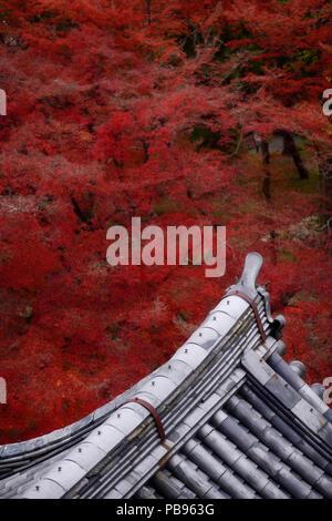 Künstlerische Ansicht von traditionellen japanischen Tempel bauen Dach mit Lehm, Fliesen, Kawara, in bunten Herbst Landschaft bei Nanzen-ji Zen-buddhistischen Tempel Komplex - Stockfoto
