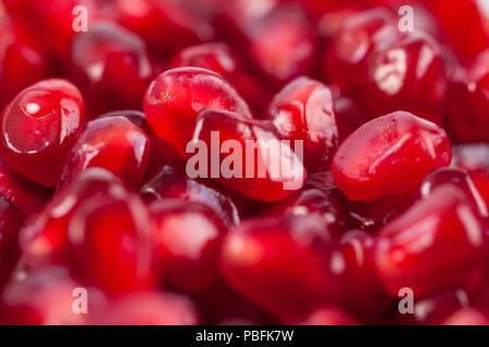 Nahaufnahme von frischen Bio Granatapfel Samen, Früchte. - Stockfoto
