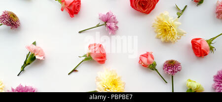 Blumen-Komposition. Gestell aus getrockneten Rosenblüten auf weißem Hintergrund. Flach legen, Top Aussicht. - Stockfoto