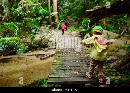 Eine Mutter Wandern mit Kindern durch einen Regenwald, Kauri Creek Walk, Jungal Jungal, Danbulla, Tablelands Region, Far North Queensland, Australien - Stockfoto