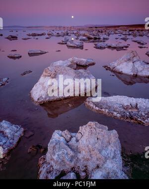 Dämmerung, Mondaufgang, Mono Lake, Mono Basin National Forest Scenic Area, Inyo National Forest, Kalifornien - Stockfoto