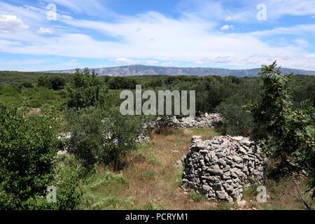 Stari Grad (UNESCO-Weltkulturerbe), Hvar, Kroatien - Stockfoto