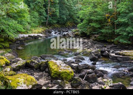Wasserfall Saut du Doubs am Lac des Brenets, Doubstal, in der Nähe von Les Brenets, Neuenburger Jura, Kanton Neuenburg, West Switzerland, Schweiz - Stockfoto