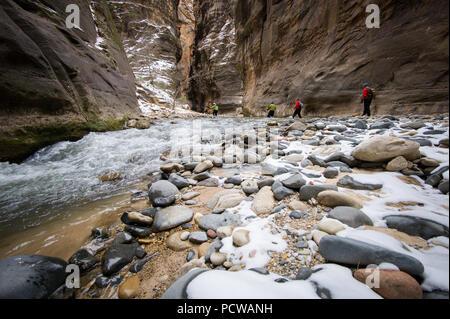 Wandern Zion National Park berühmten Slot Canyon, die Narrows, im Winter erfordert eine trockene und warme Kleidung. Es ist viel weniger überlaufen als im Sommer. - Stockfoto