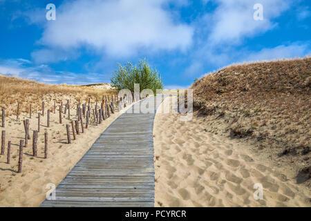 Dünen mit Holzsteg über Sand in der Nähe von Ostsee. Board weg über Sand Strand Dünen in Litauen. - Stockfoto