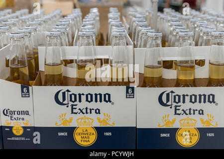 Mini Kühlschrank Corona : Dosen bier und flaschen weißwein im fosters lager mini kühlschrank