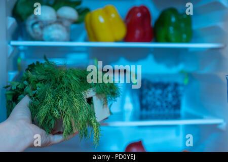 Kühlschrank Korb : Person korb mit frischem dill gegen offene kühlschrank stockfoto