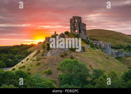 Corfe Castle, Dorset, Großbritannien. 8. August 2018. UK Wetter. Ein dramatischer Sonnenaufgang an den Ruinen von Corfe Castle in Dorset. Der Sonnenaufgang war bald verdeckt durch eine Verdickung band der Wolke, die Regen kurz nach produziert. Foto: Graham Jagd-/Alamy leben Nachrichten - Stockfoto