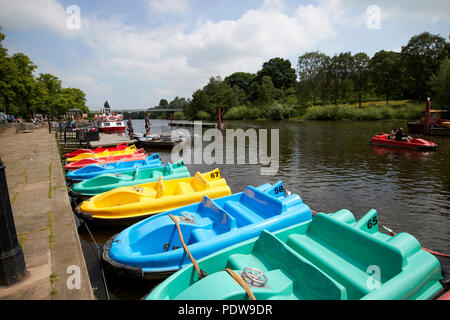 Tretboote zu mieten auf dem Fluss Dee in Chester Cheshire England Großbritannien - Stockfoto