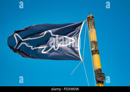 Schwarze Flagge Signalisierung hai Gefahr in Muizemberg, Südafrika - Stockfoto