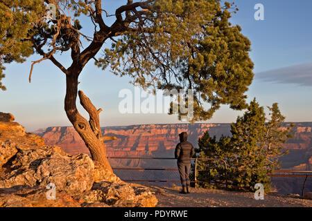 AZ 00257-00 ... ARIZONA - Park Besucher den Sonnenaufgang über dem Grand Canyon von Desert View Point im Grand Canyon National Park. - Stockfoto