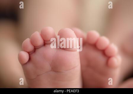 Die Füße eines Neugeborenen in den Händen der Eltern. Happy Family oncept. Mama und Papa hug Beine Ihres Babys. - Stockfoto